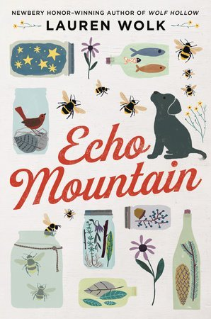 Echo Mountain by Lauren Wolk, a review